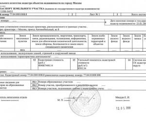 выписка из кадастрового паспорта 0