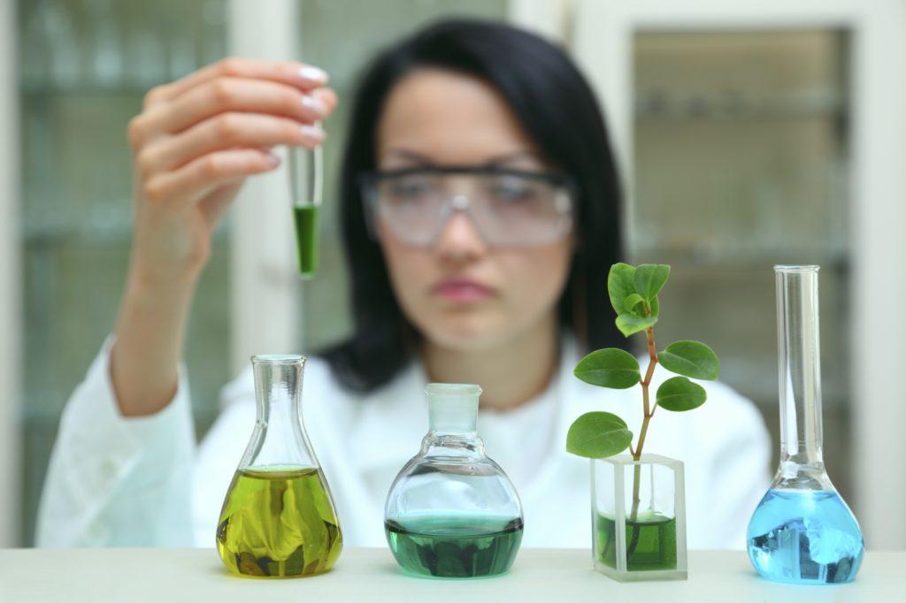 Экологический сертификат соответствия на продукцию ЭКО
